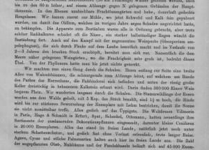 Die Weltfirma Haage & Schmidt sendet 1886 Pflanzen nach Sotschi